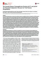 prikaz prve stranice dokumenta The Essential Human Cytomegalovirus Proteins pUL77 and pUL93 Are Structural Components Necessary for Viral Genome Encapsidation